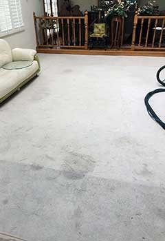 Burbank Carpet Cleaning Services